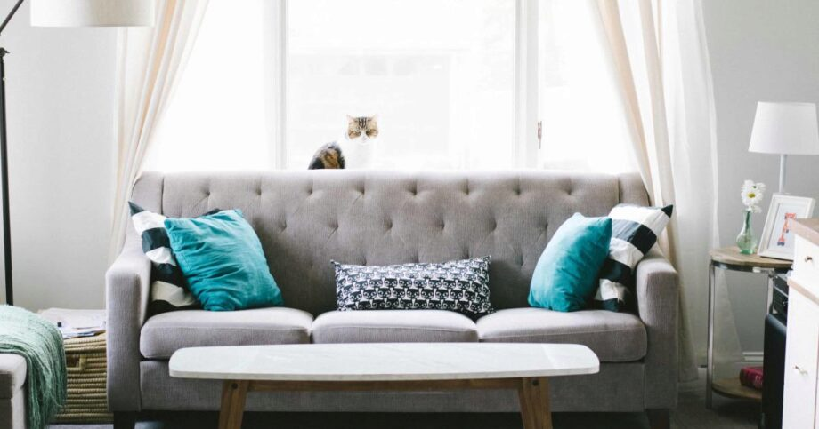 Picture of: Best Sleeper Sofa Our Top Picks For 2020 And Buyer S Guide